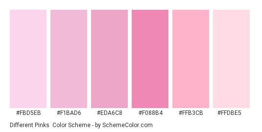 Different Pinks - Color scheme palette thumbnail - #fbd5eb #f1bad6 #eda6c8 #f088b4 #ffb3cb #ffdbe5