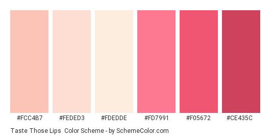 Taste Those Lips - Color scheme palette thumbnail - #fcc4b7 #feded3 #fdedde #fd7991 #f05672 #ce435c