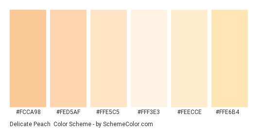 Delicate Peach - Color scheme palette thumbnail - #fcca98 #fed5af #ffe5c5 #fff3e3 #feecce #ffe6b4