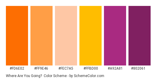 Where Are You Going? - Color scheme palette thumbnail - #fd6e02 #ff9e46 #fec7a5 #ffbd00 #a92a81 #802061