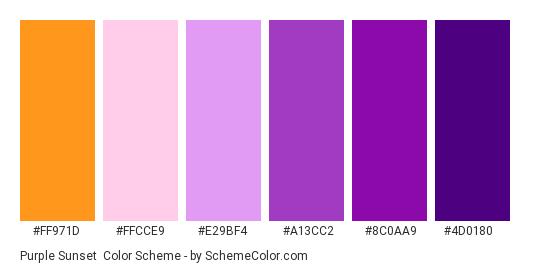 Purple Sunset - Color scheme palette thumbnail - #ff971d #ffcce9 #e29bf4 #a13cc2 #8c0aa9 #4d0180