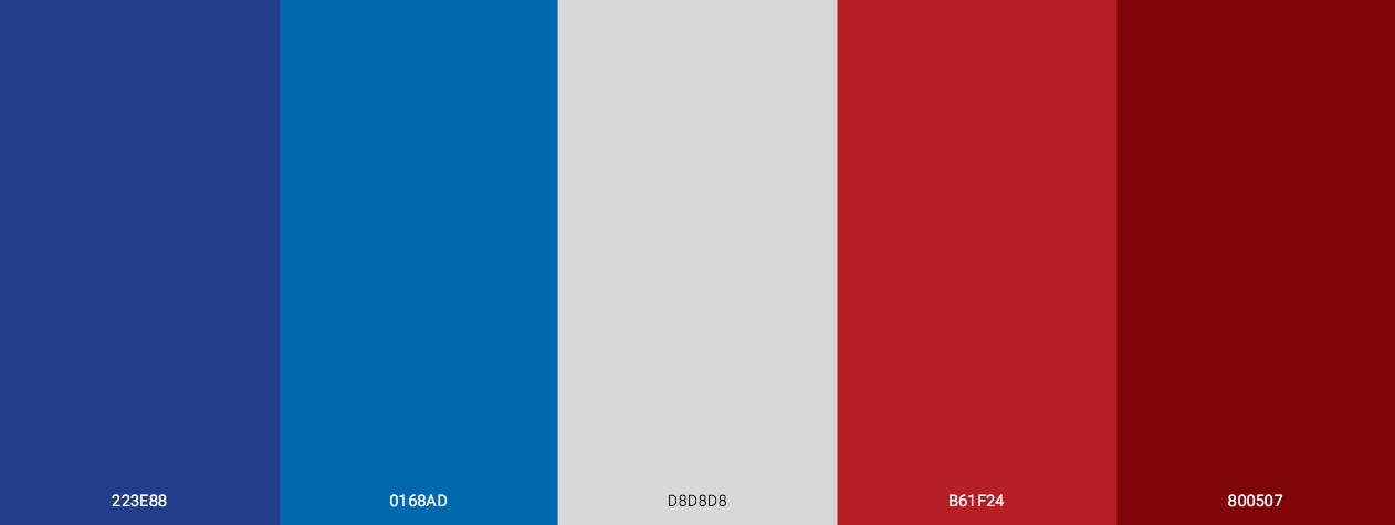 4th July Theme color palette