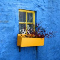 Blue-yellow-house-wall-3283e0-fbc034