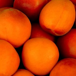 Apricots Color Palette