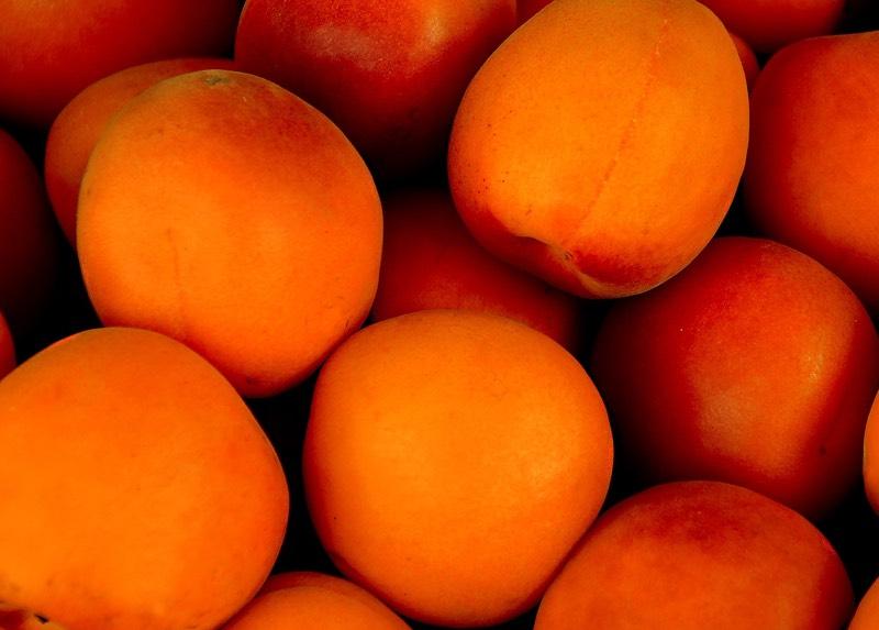 Apricots Color Palette