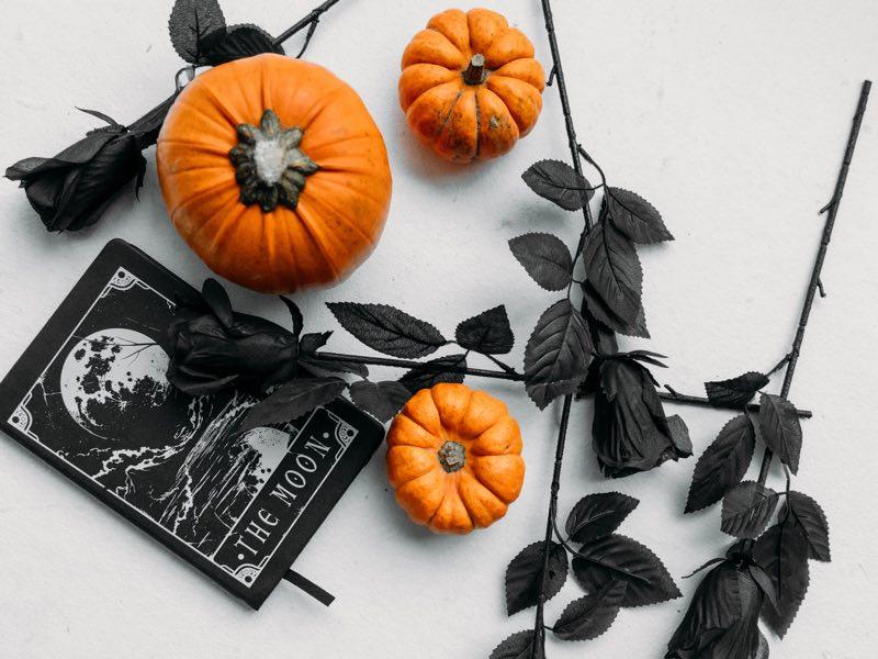 Black Roses for Halloween