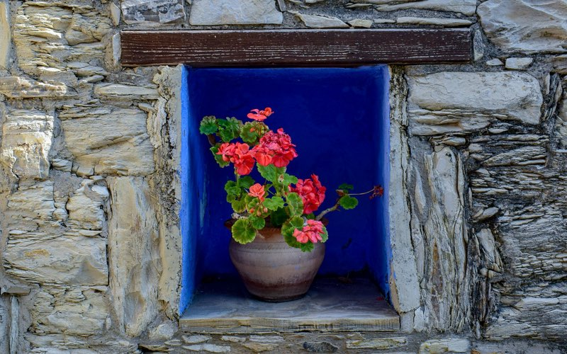 Blue colored alcove with flowers