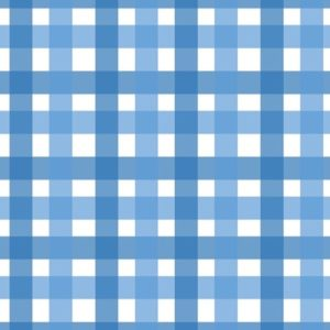 Blue Gingham Checks
