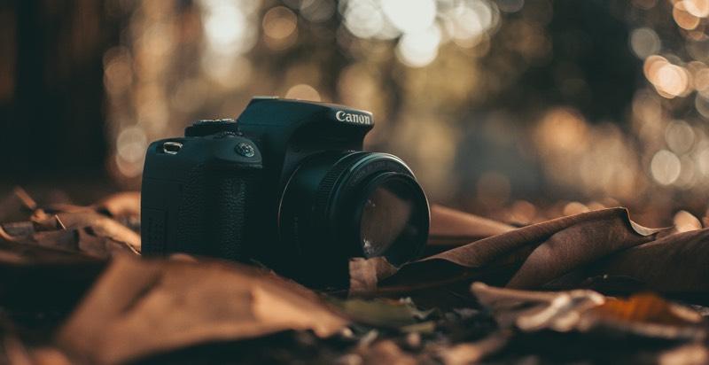Capturing Nature