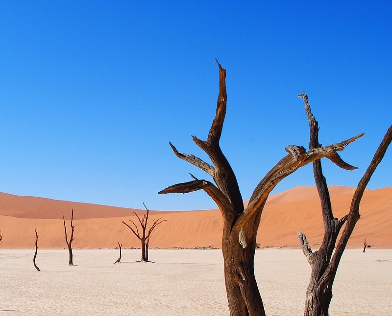 Desolate world