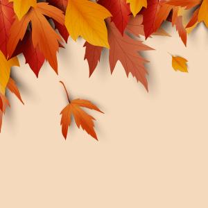 Fabulous Color Palettes for Fall Season