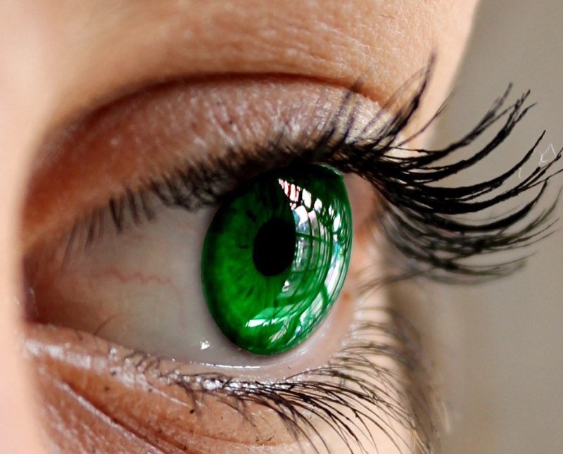 Image result for Green eyes