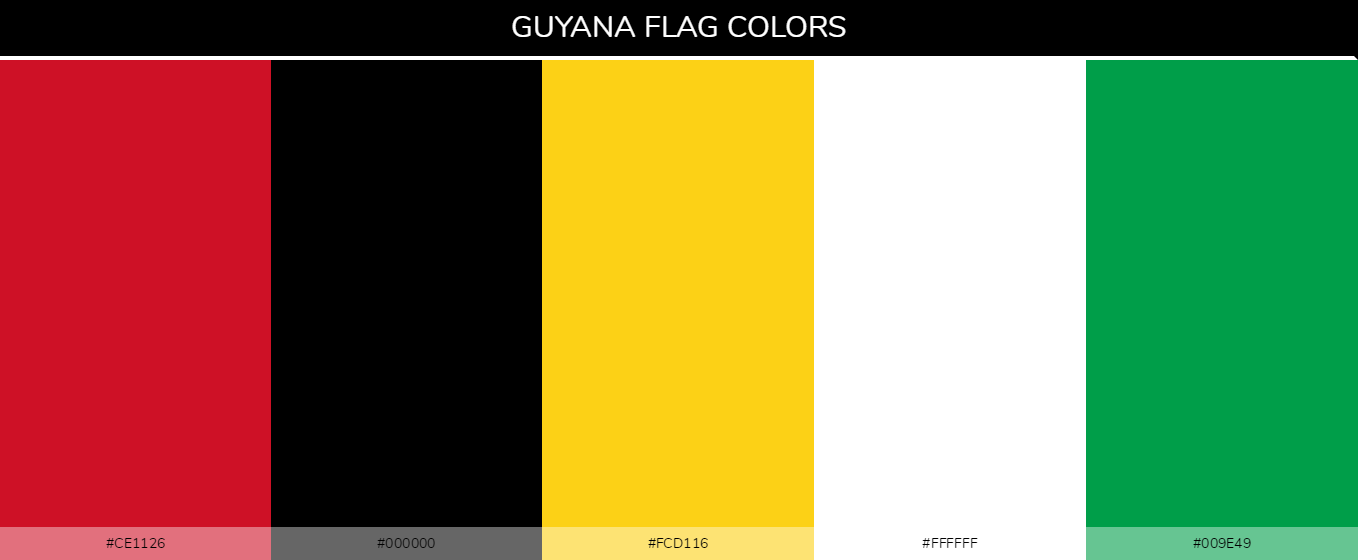 Guyana Country Flag color codes - Red #ce1126, Black #000000, Yellow #fcd116, White #ffffff, Green #009e49