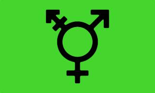 Israeli transgender flag with symbols of Venus and Mars