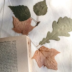Old Leaves and Book