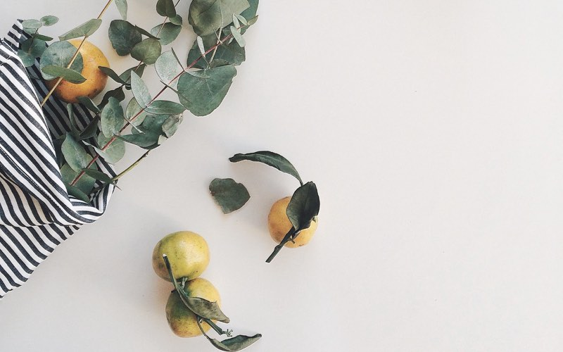Craft with plants and dried leaves