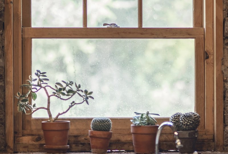 Pots on a kitchen window sill