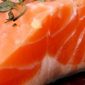 Salmon Fish Dish
