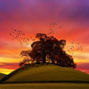 Sunset behind a hill