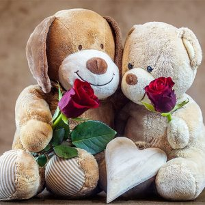 Teddy bears with roses
