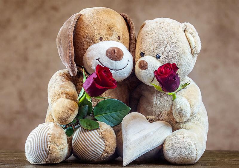 Teddy bears with roses