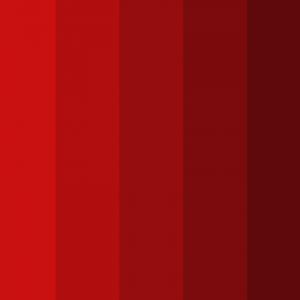 Attractive Red Monochromatic Color Palettes