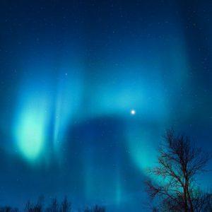 Under the Aurora
