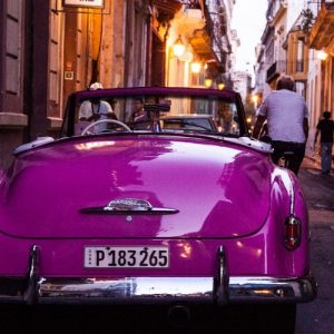 Violet Vintage Car color scheme